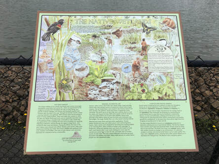 Nature Travel: Birding placard - Wastewater treatment plan, Cannon Beach, OR